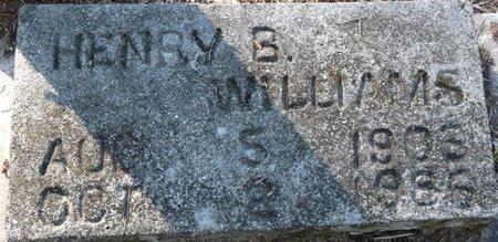 WILLIAMS, HENRY B - Wakulla County, Florida | HENRY B WILLIAMS - Florida Gravestone Photos