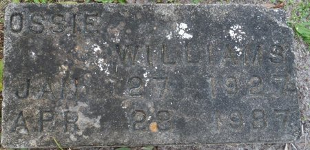 WILLIAMS, OSSIE - Wakulla County, Florida | OSSIE WILLIAMS - Florida Gravestone Photos