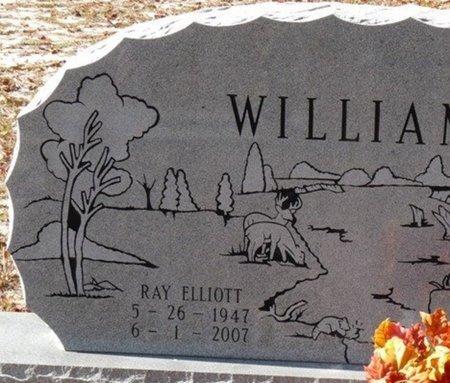WILLIAMS, RAY ELLIOTT - Wakulla County, Florida   RAY ELLIOTT WILLIAMS - Florida Gravestone Photos