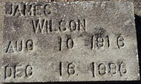 WILSON, JAMES - Wakulla County, Florida   JAMES WILSON - Florida Gravestone Photos