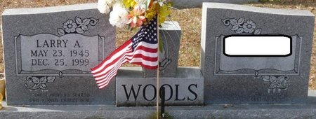 WOOLS, LARRY ALLEN - Wakulla County, Florida | LARRY ALLEN WOOLS - Florida Gravestone Photos