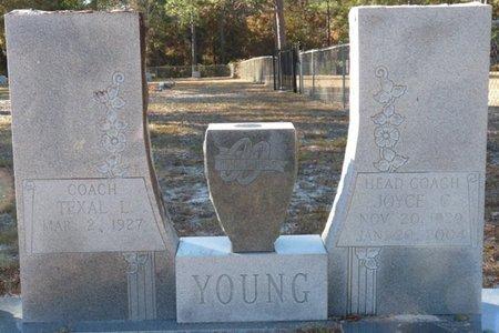 YOUNG, JOYCE C - Wakulla County, Florida | JOYCE C YOUNG - Florida Gravestone Photos