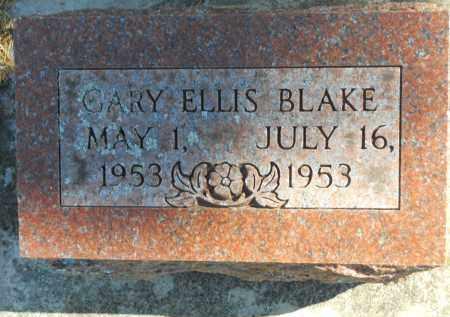 BLAKE, GARY ELLIS - Boone County, Illinois | GARY ELLIS BLAKE - Illinois Gravestone Photos