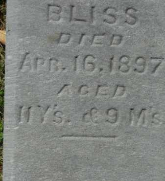 BLISS, ETHEL LORENA - Boone County, Illinois | ETHEL LORENA BLISS - Illinois Gravestone Photos