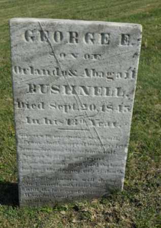 BUSHNELL, GEORGE E. - Boone County, Illinois   GEORGE E. BUSHNELL - Illinois Gravestone Photos