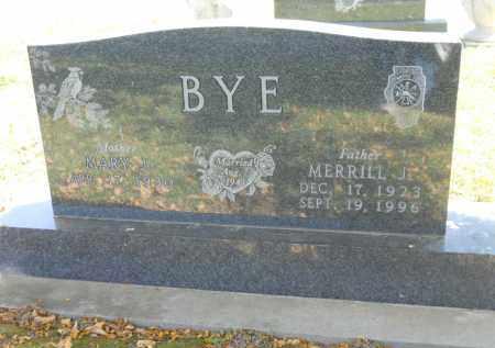 BYE, MARY J. - Boone County, Illinois | MARY J. BYE - Illinois Gravestone Photos