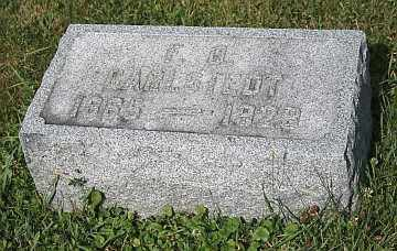 CARLSTEDT, F O - Boone County, Illinois | F O CARLSTEDT - Illinois Gravestone Photos