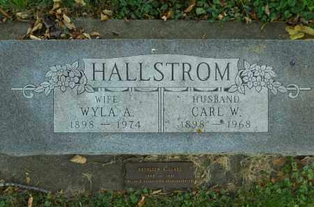 HALLSTROM, CARL W. - Boone County, Illinois | CARL W. HALLSTROM - Illinois Gravestone Photos