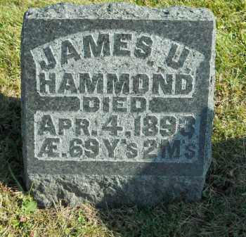 HAMMOND, JAMES U. - Boone County, Illinois | JAMES U. HAMMOND - Illinois Gravestone Photos