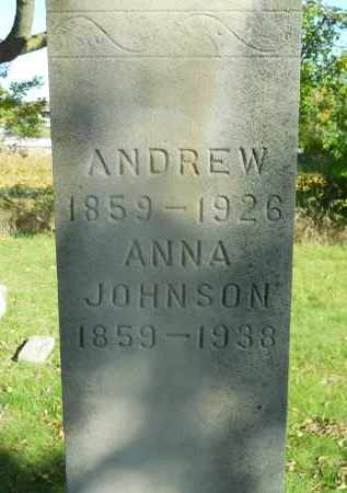 JOHNSON, ANNA - Boone County, Illinois | ANNA JOHNSON - Illinois Gravestone Photos