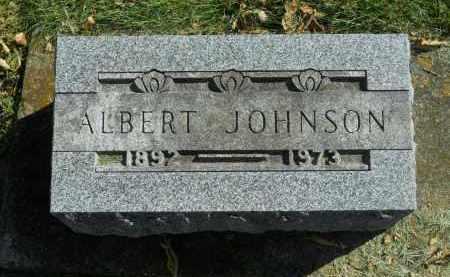 JOHNSON, ALBERT - Boone County, Illinois | ALBERT JOHNSON - Illinois Gravestone Photos
