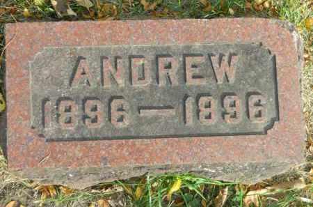 JOHNSON, ANDREW - Boone County, Illinois | ANDREW JOHNSON - Illinois Gravestone Photos