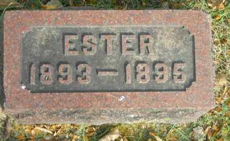 JOHNSON, ESTER - Boone County, Illinois   ESTER JOHNSON - Illinois Gravestone Photos