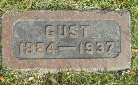 JOHNSON, GUST - Boone County, Illinois | GUST JOHNSON - Illinois Gravestone Photos