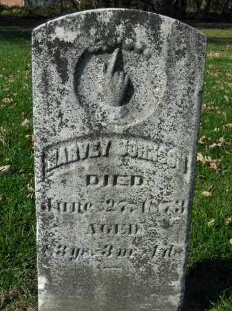 JOHNSON, HARVEY - Boone County, Illinois | HARVEY JOHNSON - Illinois Gravestone Photos