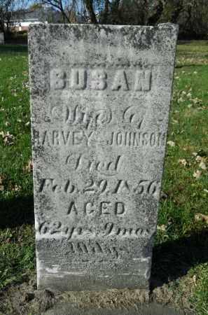 JOHNSON, SUSAN - Boone County, Illinois   SUSAN JOHNSON - Illinois Gravestone Photos