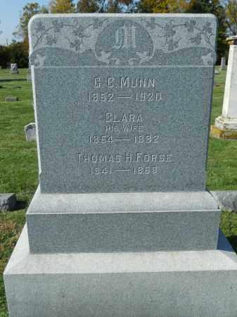 MUNN, CLARA - Boone County, Illinois | CLARA MUNN - Illinois Gravestone Photos