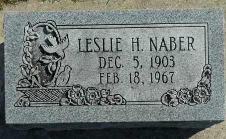 NABER, LESLIE H. - Boone County, Illinois | LESLIE H. NABER - Illinois Gravestone Photos