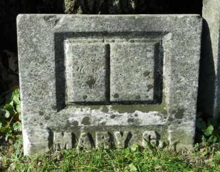 QUINN, MARY C. - Boone County, Illinois | MARY C. QUINN - Illinois Gravestone Photos