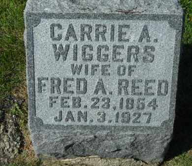 WIGGERS REED, CARRIE A. - Boone County, Illinois | CARRIE A. WIGGERS REED - Illinois Gravestone Photos