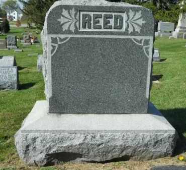 REED, FAMILY STONE - Boone County, Illinois | FAMILY STONE REED - Illinois Gravestone Photos