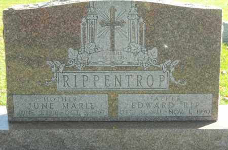 RIPPENTROP, JUNE MARIE - Boone County, Illinois   JUNE MARIE RIPPENTROP - Illinois Gravestone Photos