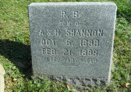 SHANNON, R.B. - Boone County, Illinois | R.B. SHANNON - Illinois Gravestone Photos