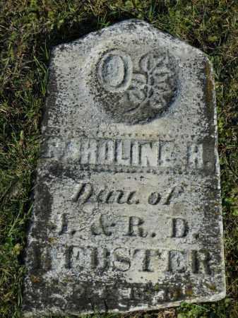 WEBSTER, CAROLINE - Boone County, Illinois | CAROLINE WEBSTER - Illinois Gravestone Photos