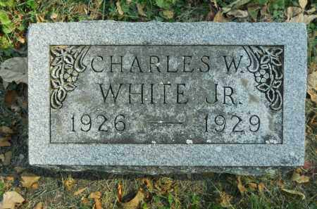 WHITE, CHARLES W. JR. - Boone County, Illinois | CHARLES W. JR. WHITE - Illinois Gravestone Photos