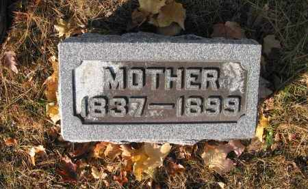 DAUMER HERBOLSHEIMER, MARY - Bureau County, Illinois | MARY DAUMER HERBOLSHEIMER - Illinois Gravestone Photos