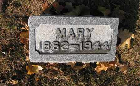 HERBOLSHEIMER, MARY - Bureau County, Illinois | MARY HERBOLSHEIMER - Illinois Gravestone Photos