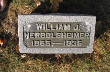 HERBOLSHEIMER, WILLIAM - Bureau County, Illinois | WILLIAM HERBOLSHEIMER - Illinois Gravestone Photos