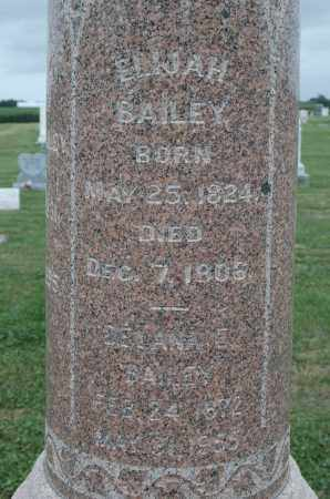 BAILEY, DELANA E. - Carroll County, Illinois | DELANA E. BAILEY - Illinois Gravestone Photos