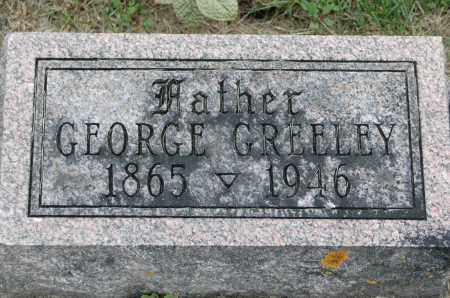 GREELEY, GEORGE - Carroll County, Illinois | GEORGE GREELEY - Illinois Gravestone Photos