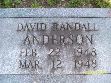 ANDERSON, DAVID RANDALL - Cass County, Illinois | DAVID RANDALL ANDERSON - Illinois Gravestone Photos