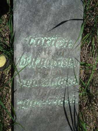 BARDSLEY, CORA A. - Cass County, Illinois | CORA A. BARDSLEY - Illinois Gravestone Photos