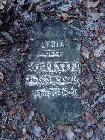CARPENTER, LYDIA - Cass County, Illinois | LYDIA CARPENTER - Illinois Gravestone Photos