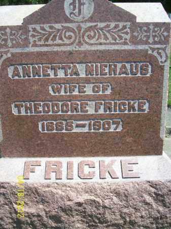 NIEHAUS FRICKE, ANNETTA - Cass County, Illinois | ANNETTA NIEHAUS FRICKE - Illinois Gravestone Photos