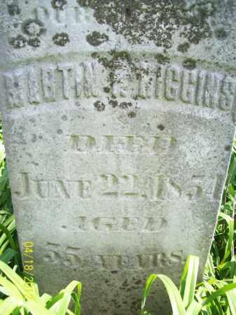 HIGGINS, MARTIN F - Cass County, Illinois | MARTIN F HIGGINS - Illinois Gravestone Photos