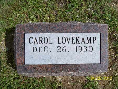 LOVEKAMP, CAROL - Cass County, Illinois | CAROL LOVEKAMP - Illinois Gravestone Photos