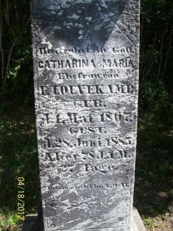 LOVEKAMP, CATHARINA MARIA - Cass County, Illinois | CATHARINA MARIA LOVEKAMP - Illinois Gravestone Photos