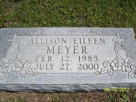 MEYER, ALLISON EILEEN - Cass County, Illinois | ALLISON EILEEN MEYER - Illinois Gravestone Photos