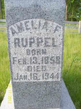 KROHE RUPPEL, AMELIA F - Cass County, Illinois | AMELIA F KROHE RUPPEL - Illinois Gravestone Photos