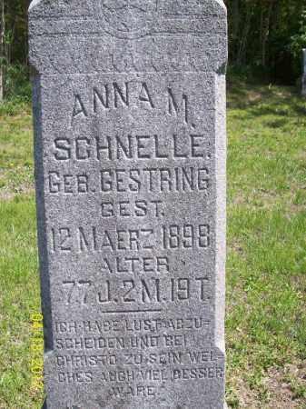 SCHNELLE, ANNA M. - Cass County, Illinois | ANNA M. SCHNELLE - Illinois Gravestone Photos