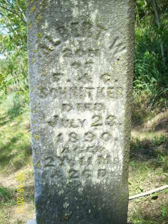 SCHNITKER, ALBERT W. - Cass County, Illinois | ALBERT W. SCHNITKER - Illinois Gravestone Photos