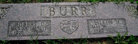 BURR, EILEEN M. - Champaign County, Illinois | EILEEN M. BURR - Illinois Gravestone Photos
