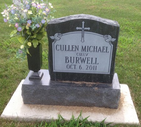 """BURWELL, CULLEN MICHAEL """"CULLY"""" - Champaign County, Illinois 