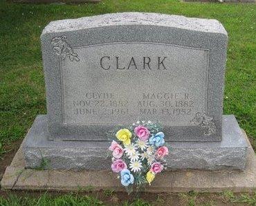 CLARK, CLYDE - Champaign County, Illinois | CLYDE CLARK - Illinois Gravestone Photos