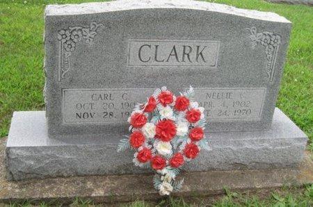 CLARK, NELLIE - Champaign County, Illinois | NELLIE CLARK - Illinois Gravestone Photos