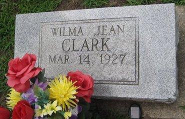 CLARK, WILMA JEAN - Champaign County, Illinois   WILMA JEAN CLARK - Illinois Gravestone Photos